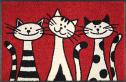 Three-Cats-50x75